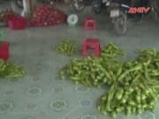 """Thị trường - Tiêu dùng - Lật tẩy trò thu mua nông sản """"lạ đời"""" của thương lái TQ"""