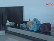 """Video An ninh - Cục Hàng không """"nhờ"""" công an điều tra vụ trộm hành lý"""