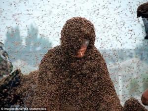 Phi thường - kỳ quặc - Clip 1 triệu con ong bám trên cơ thể lập kỷ lục thế giới