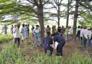 Tin tức Việt Nam - Phát hiện thi thể bị trói tay, treo cổ trên cây