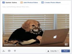 Công nghệ thông tin - Cách đăng ảnh động lên Facebook
