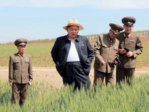 Thế giới - Kim Jong-un phanh áo đi kiểm tra nông trại