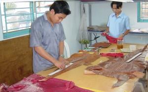 Thị trường - Tiêu dùng - Chăn nuôi cá sấu lâm vào tình cảnh xấu