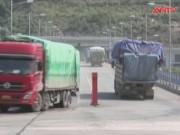 Thị trường - Tiêu dùng - Hơn 500 tấn vải thiều đã được thông quan sang TQ