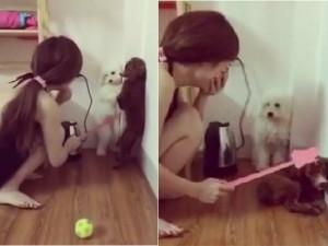 Bạn trẻ - Cuộc sống - Clip gái xinh phạt cún cưng siêu dễ thương gây sốt