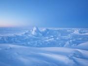 Tin tức trong ngày - Gián điệp ở... Bắc cực