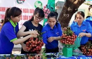 """Thị trường - Tiêu dùng - Đến lượt Quảng Ngãi ra tay """"giải cứu"""" vải thiều Bắc Giang"""