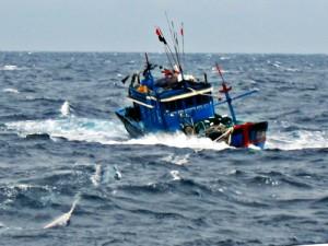 Tin tức trong ngày - Tàu cá chết máy, 38 ngư dân trôi dạt trên biển 3 ngày