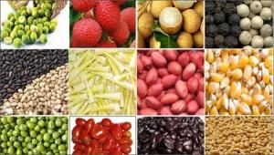 Thị trường - Tiêu dùng - Giá hàng nông sản - 5 giảm, 5 tăng