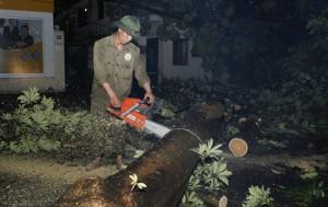 """Tin tức Việt Nam - Tiếng cưa cây """"xé"""" màn đêm Hà Nội sau cơn cuồng phong"""