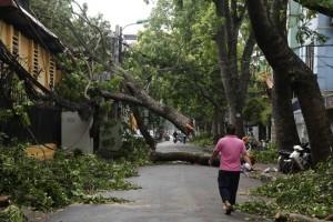 HN cấm đường, đóng cửa công viên sau trận cuồng phong
