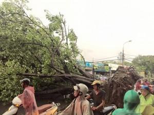 Clip: Mưa giông khủng khiếp tại Hà Nội