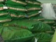 Video An ninh - Thu giữ gần 20 tấn thức ăn nuôi tôm do TQ sản xuất