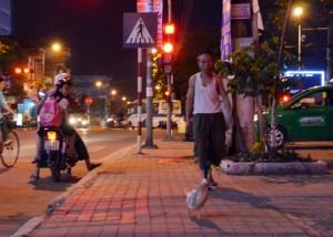 Video: Vịt tung tăng dạo phố ở Thái Bình