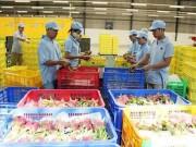 Thị trường - Tiêu dùng - Trung Quốc muốn mua nông sản Việt Nam qua sàn