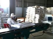 Thị trường - Tiêu dùng - Gạo Việt tắc đầu ra vì phụ thuộc Trung Quốc