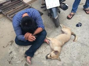 An ninh Xã hội - Ăn trộm chó, gí roi điện khiến dân phòng bất tỉnh