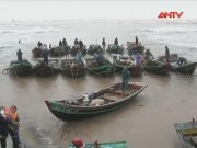 Video An ninh - Thiệt hại do bão số 1 gây ra tại các địa phương