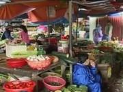 """Video An ninh - Bão số 1 đổ bộ, huyện đảo Cô Tô không """"bão giá"""""""