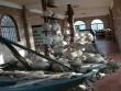 Bí ẩn ngàn năm trong những con tàu cổ dưới biển Phú Quốc