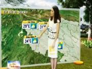 Tin tức trong ngày - Dự báo thời tiết VTV ngày 4/4