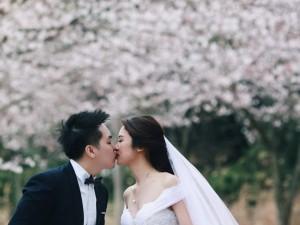 Thời trang - Ảnh cưới bên hoa anh đào Hàn Quốc mê hoặc giới trẻ
