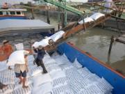 Thị trường - Tiêu dùng - Việt Nam cạnh tranh Campuchia xuất khẩu gạo vào EU