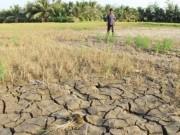 Tin tức trong ngày - Việt Nam có nên làm mưa nhân tạo cứu hạn ở Miền Tây Nam Bộ?