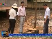 Thị trường - Tiêu dùng - Đắk Lắk: Hàng loạt công trình nước sinh hoạt bị bỏ hoang