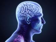 Sức khỏe đời sống - Những sự thật thú vị về cơ thể mà bạn không biết