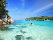 Đến Thái Lan không lặn biển Coral bạn sẽ tiếc hùi hụi