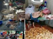 Sức khỏe đời sống - Thực phẩm bẩn và lời cảnh tỉnh của nguyên PGĐ Bệnh viện K