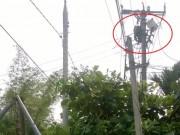 Tin tức trong ngày - Vụ thợ điện chết khi đã cúp điện: Giám đốc CA tỉnh chỉ đạo làm rõ
