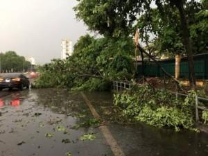 Tin tức trong ngày - Hà Nội xuất hiện mưa giông kèm tố, lốc trong 2 ngày tới