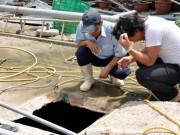 Tin tức trong ngày - 3 người tử vong khi đang sửa đường khí biogas