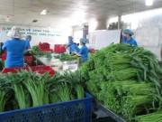Thị trường - Tiêu dùng - TP HCM sẽ quản lý thực phẩm từ gốc đến ngọn