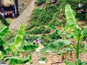 An ninh Xã hội - Vụ thanh niên chết ở bụi chuối: Nạn nhân tham gia hỗn chiến?