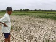 Tài chính - Bất động sản - Việt Nam cần hỗ trợ khẩn cấp 48,5 triệu USD do hạn mặn