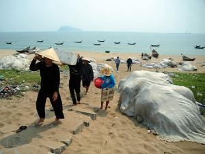 """Tin tức trong ngày - Chùm ảnh: Thuyền lưới hóa """"mồ trắng"""" bên bờ biển Hà Tĩnh"""