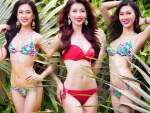 Thời trang - Dàn mỹ nhân thi Hoa khôi Áo dài đẹp mê hồn với bikini