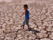 Tài chính - Bất động sản - Hạn, mặn gây thiệt hại 5.572 tỷ đồng