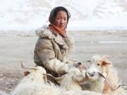 Du lịch - Cuộc sống nguyên thủy của bộ tộc trên đỉnh Himalayas