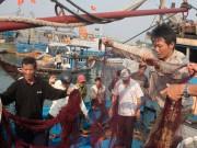 Tin tức trong ngày - Tàu cá bị đâm ở Hoàng Sa, 34 ngư dân nhảy xuống biển