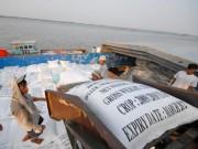 Thị trường - Tiêu dùng - Tránh bị động khi Thái Lan xả gạo
