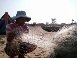 """Tin tức trong ngày - """"Không có chuyện cá chết xếp lớp ở biển Quảng Bình"""""""