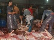 Thị trường - Tiêu dùng - TP.HCM đóng cửa các cơ sở giết mổ thủ công