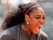 Thể thao - Tin thể thao HOT 13/5: Serena khốn khổ vì ăn đồ của cún cưng