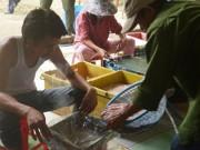 Thị trường - Tiêu dùng - Truy tìm hóa chất tẩm vào nội tạng động vật