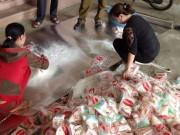 Thị trường - Tiêu dùng - Bán bột ngọt giả thương hiệu Miwon cho bà con miền núi