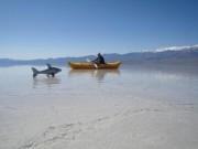 Du lịch - Hồ nước bất ngờ xuất hiện giữa thung lũng Chết